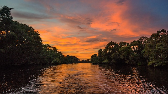 sunset-1021085_640 (1)